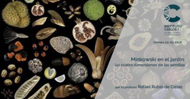 Minkowski en el jardin: las 4 dimensiones de las semillas